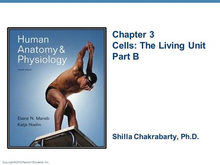 Chapter 3 Cells: The Living Unit Part B Shilla Chakrabarty, Ph.D.