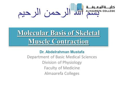 Molecular Basis of Skeletal Muscle Contraction Dr. Abdelrahman Mustafa Department of Basic Medical Sciences Division of Physiology Faculty of Medicine.