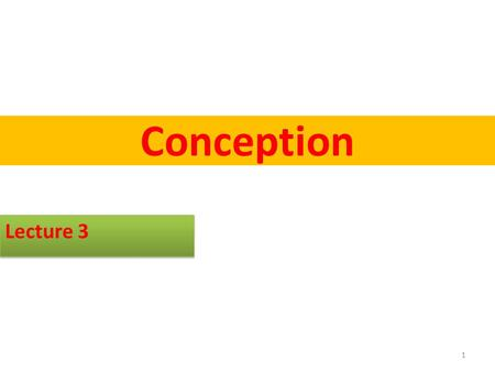 Conception Lecture 3 1. Conception Conception is when sperm and egg meet and fertilization occurs Conception occurs in the outer third of the fallopian.