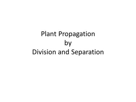 Plant Propagation by Division and Separation. A subtle difference Division – plant parts were not intended to be separated (at least not immediately,