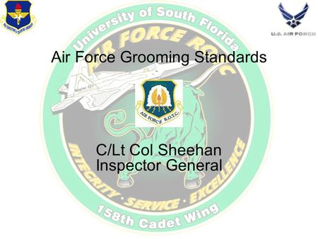 Air Force Grooming Standards C/Lt Col Sheehan Inspector General.