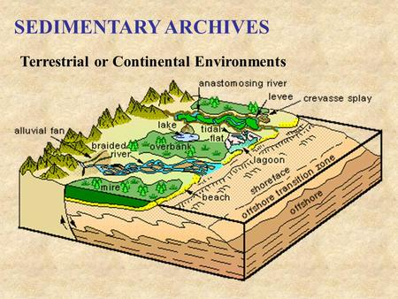 SEDIMENTARY ARCHIVES Terrestrial or Continental Environments.