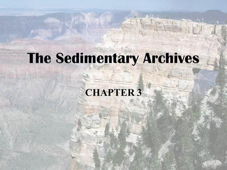 The Sedimentary Archives