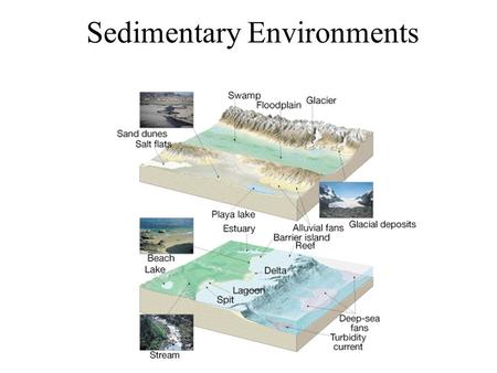 Sedimentary Environments. Fossil Sedimentary rocks record environmental information.
