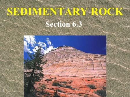 SEDIMENTARY ROCK Section 6.3.