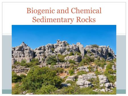 UNIT 3 Biogenic and Chemical Sedimentary Rocks. Chemical Sedimentary Rocks In contrast to detrital rocks, which form from the solid products of weathering,
