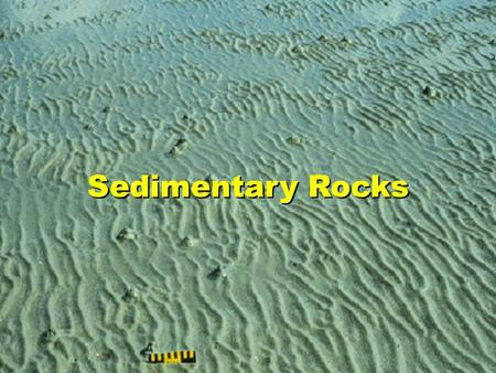 Sedimentary Rocks. DID YOU KNOW? 75% of rocks exposed at Earths surface are sedimentary Sedimentary rocks form in various regions oceans, lakes, rivers,