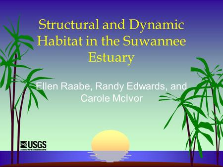 Structural and Dynamic Habitat in the Suwannee Estuary Ellen Raabe, Randy Edwards, and Carole McIvor.