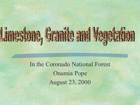 In the Coronado National Forest Onamia Pope August 23, 2000.