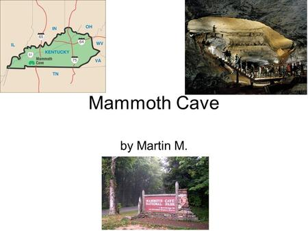 Mammoth Cave by Martin M.. When the park became a national park. In 1926, Congress gave an approval to make Mammoth Cave a national park. This was authorized.