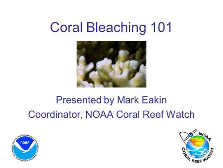 Coral Bleaching 101 Presented by Mark Eakin Coordinator, NOAA Coral Reef Watch.