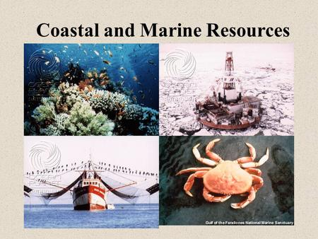 Coastal and Marine Resources. Main Lecture Topics Economically important living and non-living resources International legal framework that governs utilization.