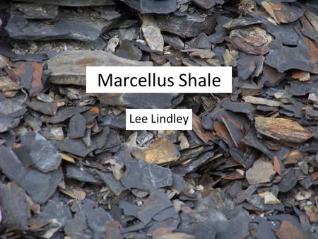 Marcellus Shale Lee Lindley. Intro Marcellus shale contains estimated 489 tcf of recoverable hydrocarbons Additional 84 tcf of undiscovered reserves.