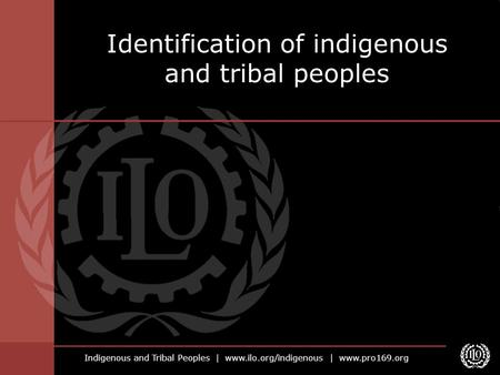 Indigenous and Tribal Peoples | www.ilo.org/indigenous | www.pro169.org Identification of indigenous and tribal peoples.