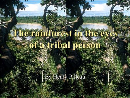 The rainforest in the eyes of a tribal person By Henry Pilleau.