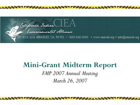 Mini-Grant Midterm Report FMP 2007 Annual Meeting March 26, 2007.