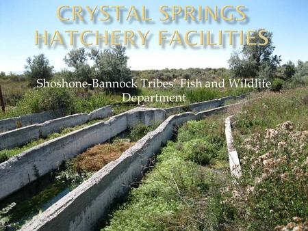 Crystal Springs Hatchery Facilities