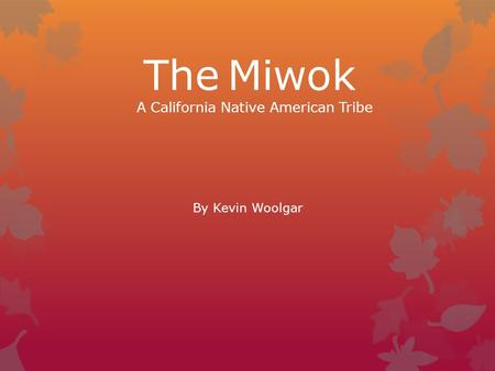 The Miwok A California Native American Tribe By Kevin Woolgar.