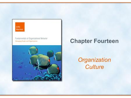 Chapter Fourteen Organization Culture.