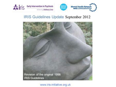 IRIS Guidelines Update September 2012 www.iris-initiative.org.uk Revision of the original 1998 IRIS Guidelines.