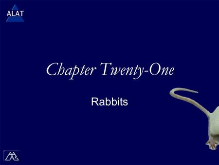 "Chapter Twenty-One Rabbits.  If viewing this in PowerPoint, use the icon to run the show (bottom left of screen).  Mac users go to ""Slide Show > View."
