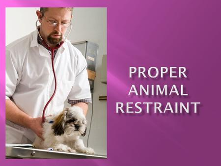  Proper restraint and handling techniques are essential for reducing stress to laboratory animals and the handler  More is NOT better. Work with the.