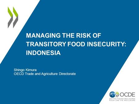 MANAGING THE RISK OF TRANSITORY FOOD INSECURITY: INDONESIA Shingo Kimura OECD Trade and Agriculture Directorate.