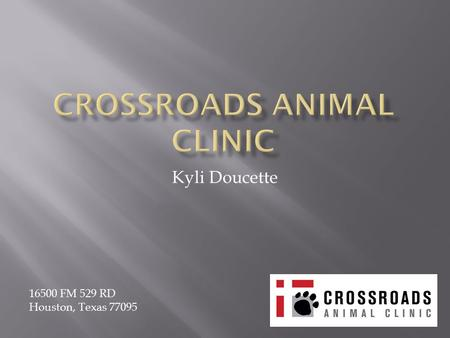 Kyli Doucette 16500 FM 529 RD Houston, Texas 77095.