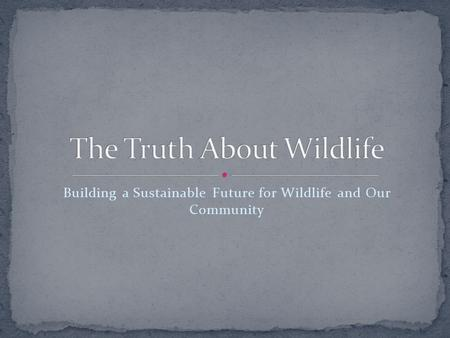 Building a Sustainable Future for Wildlife and Our Community.