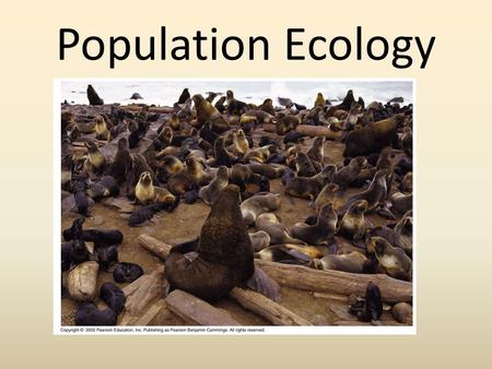 Population Ecology. Levels of Ecological Organization.