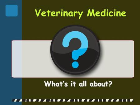 Veterinary Medicine What's it all about?. Areas of Veterinary Medicine  Private Practice  Teaching & Research  Regulatory Medicine  Public Health.