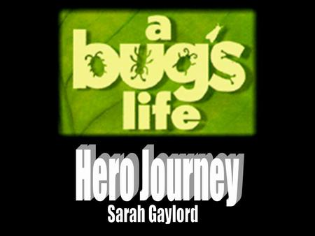 Hero Journey Sarah Gaylord.