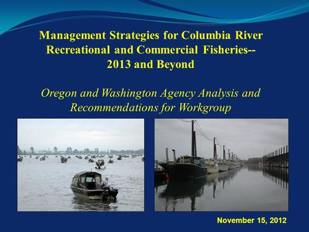 Management Strategies for Columbia River Recreational and Commercial Fisheries-- 2013 and Beyond Oregon and Washington Agency Analysis and Recommendations.