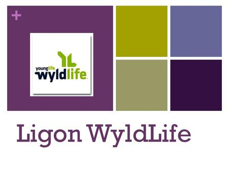 + Ligon WyldLife. + What is WyldLife? WyldLife is simple. Our desire is to serve, mentor, and love on middle school students, their families and Ligon.
