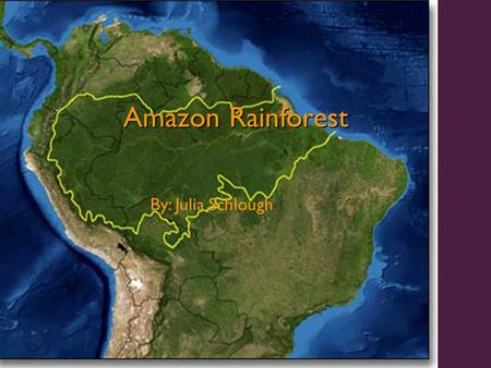 Amazon Rainforest By: Julia Schlough. General Stuff Rainforests once covered 14% of earth's surface, now they cover only 6% Experts estimate that the.