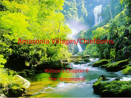 Amazonia Villages/Chiefdoms Wilson's Chapter 6 The Yanomamö.