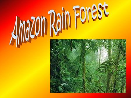 Why is the Amazon Rain Forest so special? The Amazon Rain Forest in Brazil and Peru is immense (it's larger than Europe). The 6280 kilometer (3900 mile)