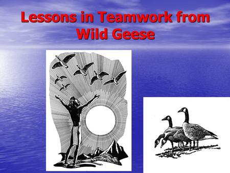 "Lessons in Teamwork from Wild Geese. 1. As each goose flaps its wings, it creates uplift for the birds that follow. By flying in a ""V"" formation, the."