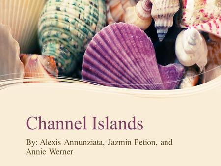 Channel Islands By: Alexis Annunziata, Jazmin Petion, and Annie Werner.