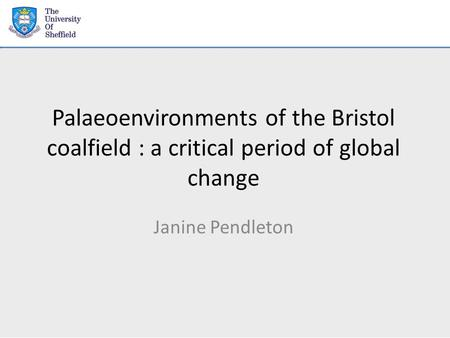 Palaeoenvironments of the Bristol coalfield : a critical period of global change Janine Pendleton.