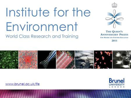Institute for the Environment World Class Research and Training www.brunel.ac.uk/ife.