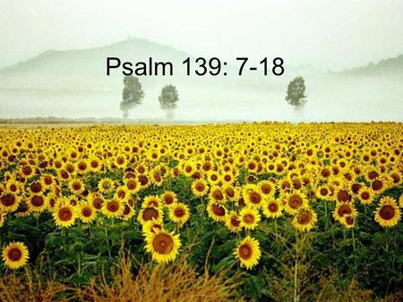 Psalm 139: 7-18. Where can I go from your Spirit? Where can I flee from your presence?