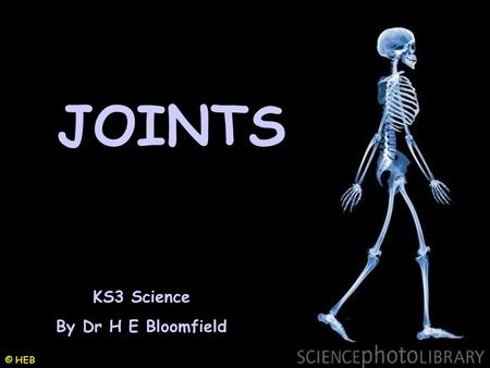 JOINTS KS3 Science By Dr H E Bloomfield © HEB.