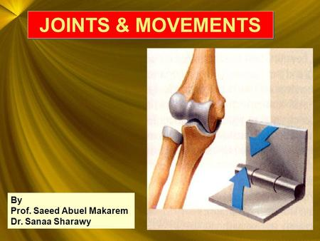 JOINTS & MOVEMENTS By Prof. Saeed Abuel Makarem Dr. Sanaa Sharawy.