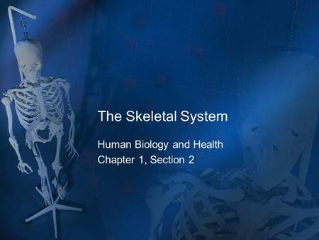 The Skeletal System Human Biology and Health Chapter 1, Section 2.