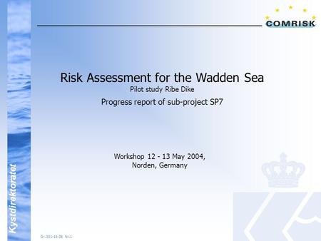 Kystdirektoratet Gr. 001-16-36 Nr.1 Risk Assessment for the Wadden Sea Pilot study Ribe Dike Progress report of sub-project SP7 Workshop 12 - 13 May 2004,