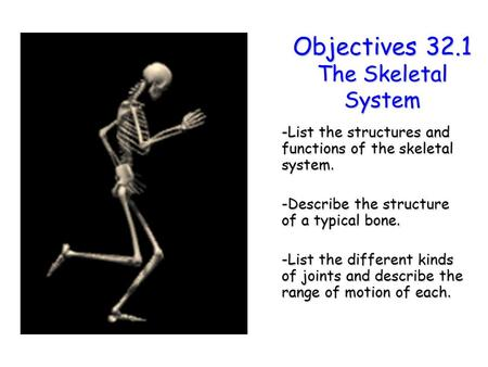 Objectives 32.1 The Skeletal System