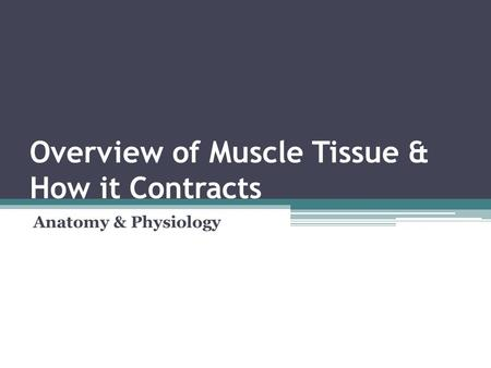 Overview of Muscle Tissue & How it Contracts Anatomy & Physiology.