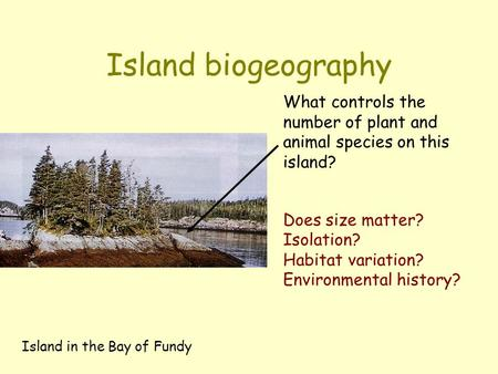 Island biogeography Island in the Bay of Fundy What controls the number of plant and animal species on this island? Does size matter? Isolation? Habitat.