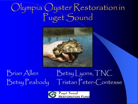 Olympia Oyster Restoration in Puget Sound Brian AllenBetsy Lyons, TNC Betsy PeabodyTristan Peter-Contesse.
